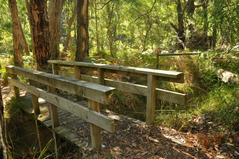 OT dam at arthurs seat is a great place to bushwalk on the mornington peninsula